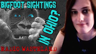 Two Bigfoot Sightings in Ohio - Paranormal News from the Wasteland