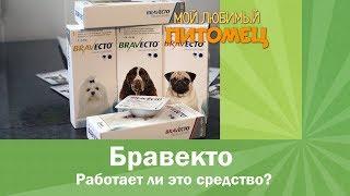 Защита от клещей средством Бравекто(На рынке зоопрепаратов существует большое количество препаратов для защиты собаки от клещей: капли на..., 2016-03-23T11:28:35.000Z)