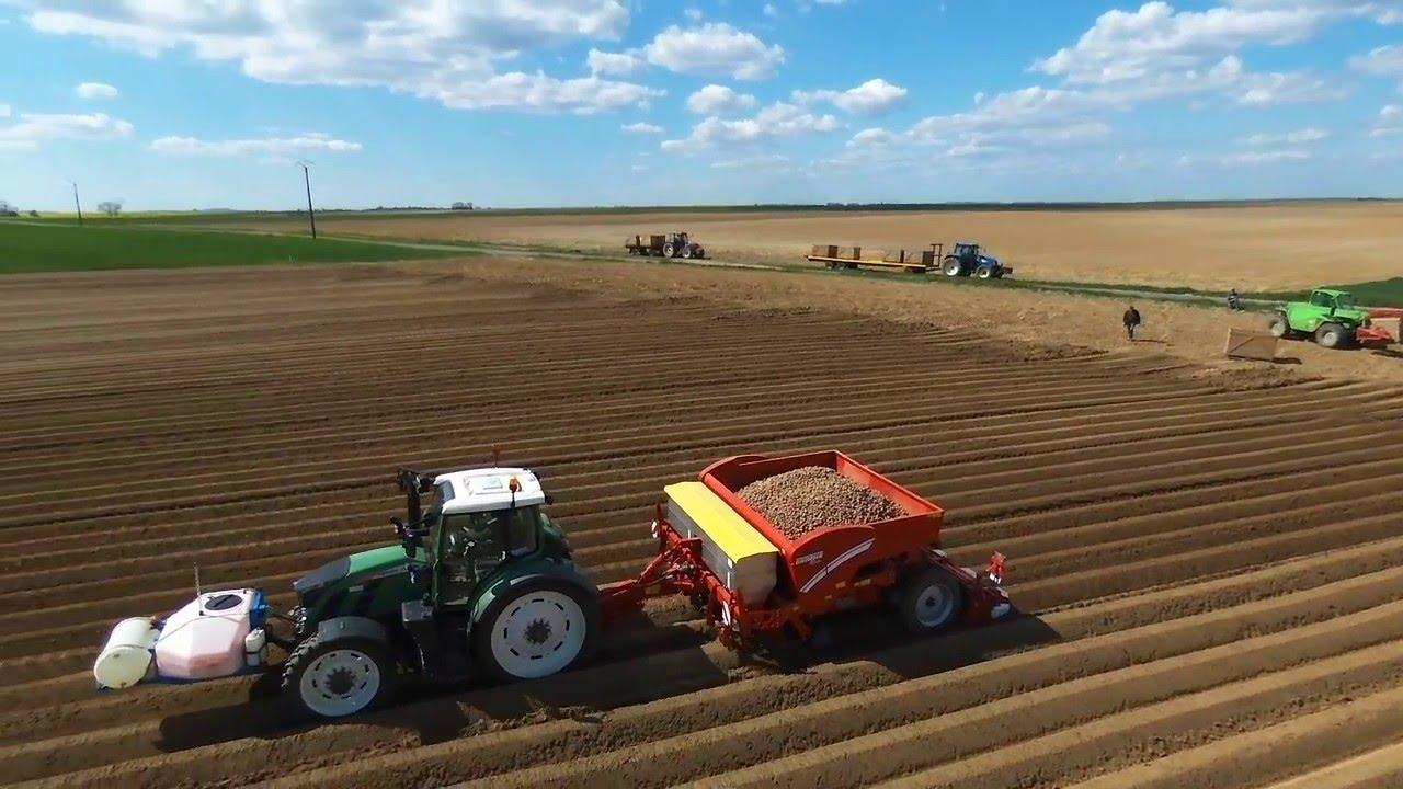 Plantation des pommes de terre youtube - Planter des pommes de terre germees ...