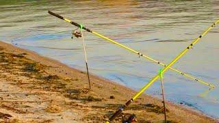 ПОРВАЛИ ПАЛАТКУ И ВСЕ ВЫТАЩИЛИ из нее рыбалка на сазана