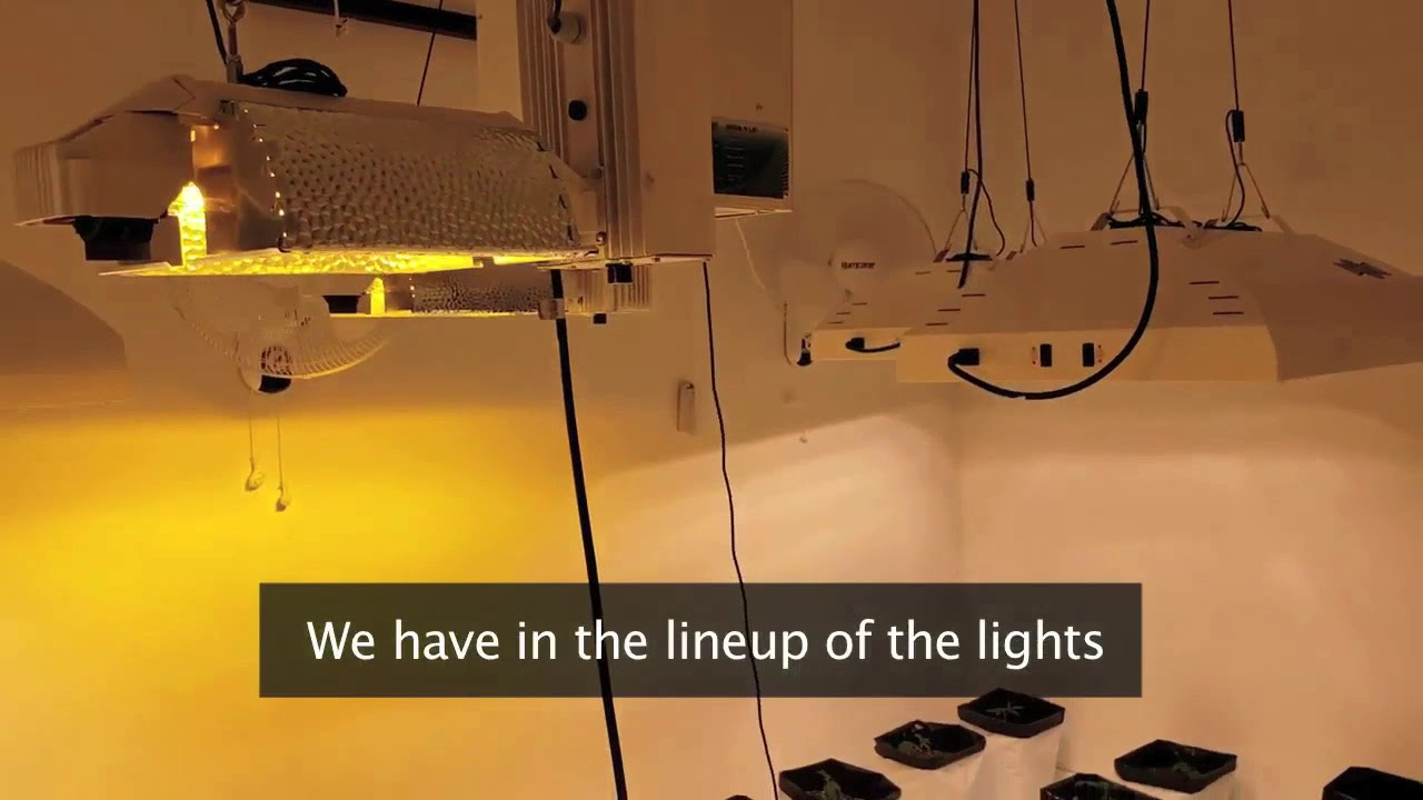 Smart #GrowRoom Setup Moving 3 Grow Lights per Motor