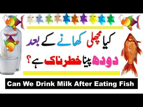 Can We Drink Milk After Eating Fish