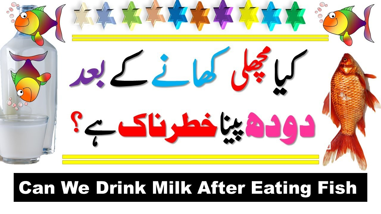 drinking milk after eating meat can we drink milk after fish food allergy hives 382