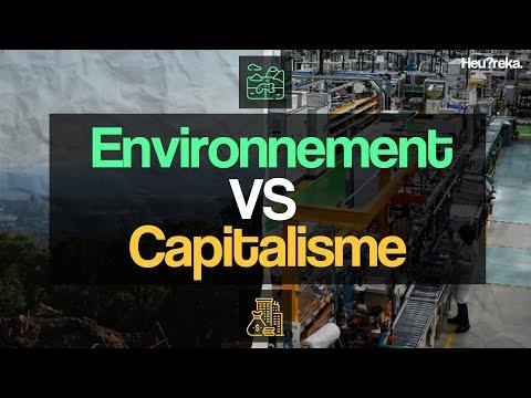 Le capitalisme peut-il faire face aux défis environnementaux ? - Heu?reka