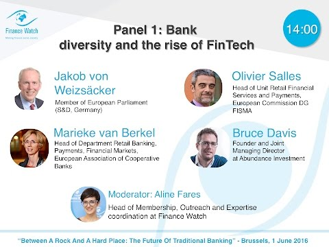 The future of traditional banking: Bank diversity and the rise of FinTech