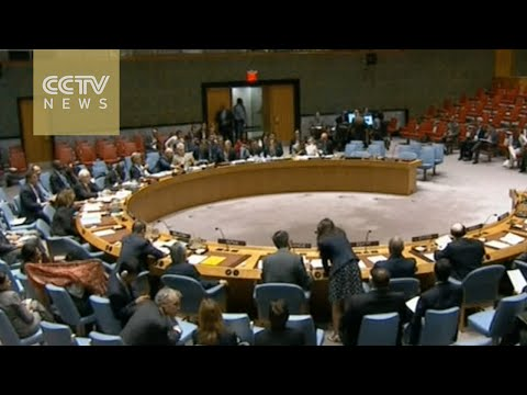 UN Security Council holds emergency meeting on Aleppo