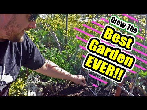 These Gardening Tips Will Help You Grow The Best Garden Of Your Life!