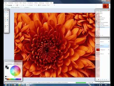 Paint.NET Texteffekte - Text im Bild