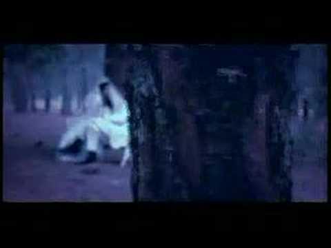 conjunto primavera-naila video original