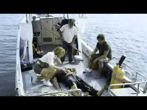 Amphibious 3D 2010 Movie Trailer