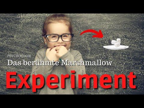Psychologie und Selbstkontrolle: Die berühmten Marshmallow-Experimente von Walter Mischel