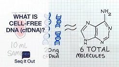 What Is Cell-Free DNA (cfDNA)? - Seq It Out #19