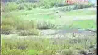 ヒグマに追われる釣り人
