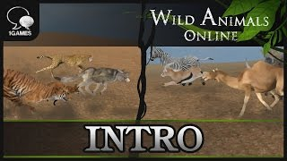Animals Combat Game