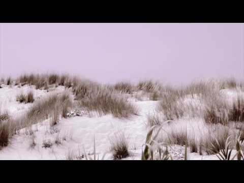 Marie Joly & Black Coffee Feat. Rebecca Murray - Gratitude (MYNY Remix)