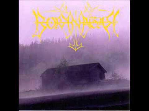 Borknagarborknagarfull album
