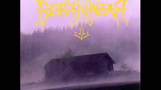 Borknagar-borknagar_full album