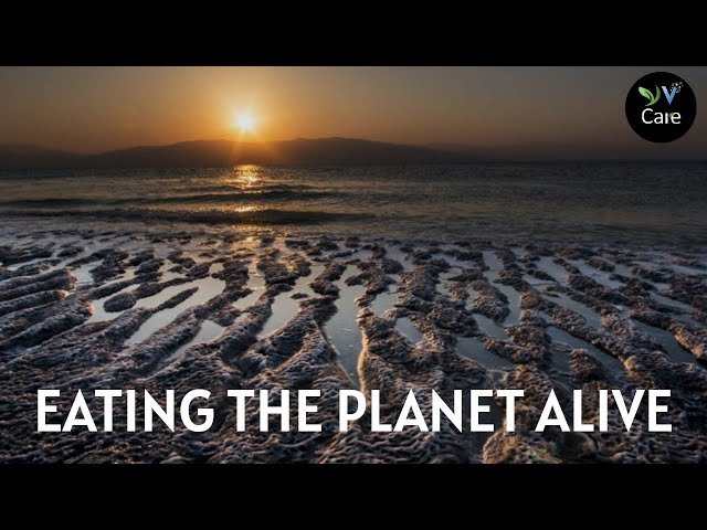Eating the Planet Alive | YV Care