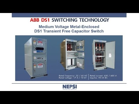 NEPSI - ABB DS1 Switching Technology