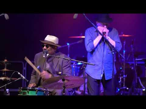 Big Daddy Wilson Trio feat. Steve Baker - Baby Don't Like