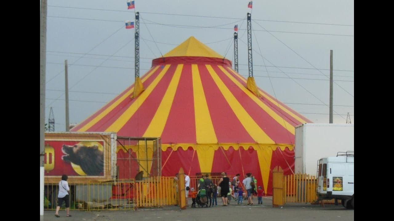 скачать игру через торрент цирк шапито - фото 2