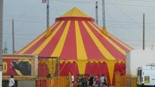 Московский цирк шапито в Новодвинске(, 2014-06-09T02:48:46.000Z)