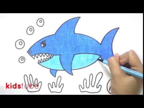 Cara Menggambar Ikan Hiu Untuk Anak Paud Tk Sd Youtube