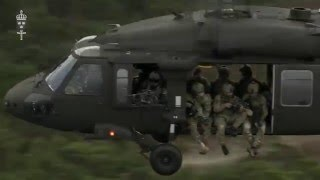 Swedish Armed Forces - Do not go gentle