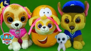 Paw Patrol Babies Hide and Seek Game Surprise Nesting Dolls Toys Bubble Guppies Yo Gabba Gabba Toys