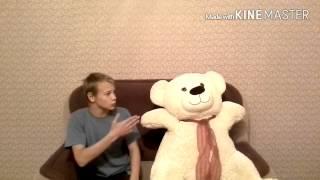 Приколы с медведями