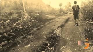 Lir-Ilir (dengan puisi cak nun) -  Jingle Record Cover