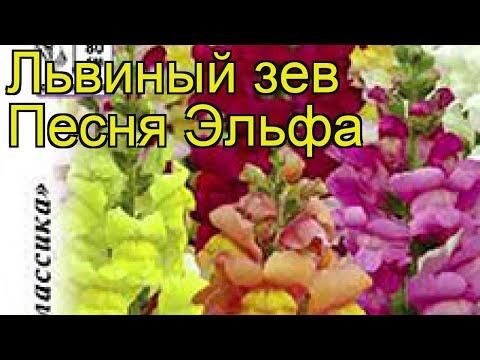 elfa каталог электронный