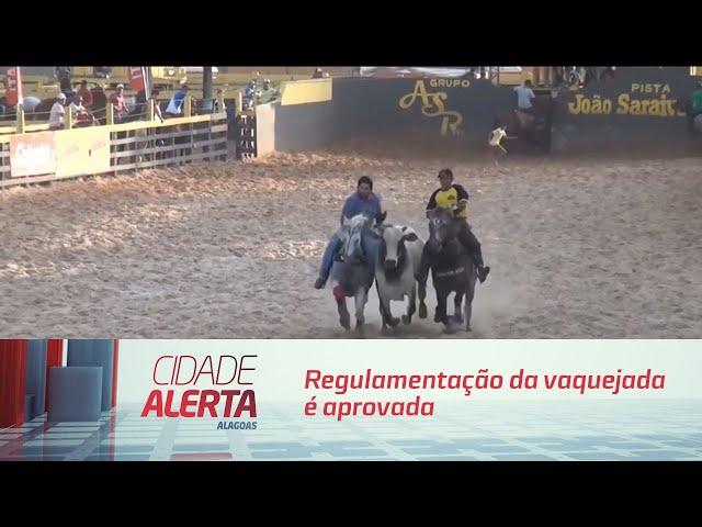 Regulamentação da vaquejada é aprovada em Brasília