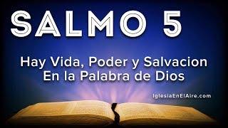 Salmo 5 | Plegaria pidiendo protección