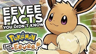 20 Pokemon Facts About Eevee That You Didn't Know