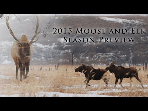 Moose And Elk Season Preview 2015 : NDGNF