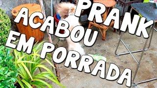 PRANK CORREU MAL ! DEU EM PORRADA ! CADELAS FIGHT ! HAHAHA