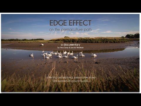 EDGE EFFECT crowdfunding