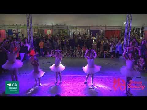 Mês Enguia Salvaterra Magos 2019 - Ballet