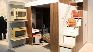 Urbano Loft Bed Small Living Solution by Casa Collection