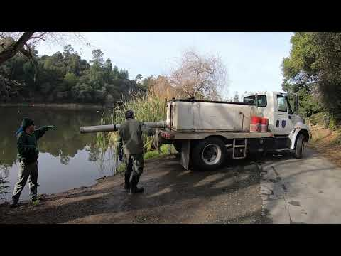 Lake Temescal Fish Planting And Fishing For Trout December 2019