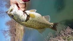 Bank Fishing In La Pryor TX