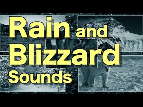 12 Hours Winter Blizzard Snowstorm Rain Thunder Sounds | Heavy Howling Wind and Snow Sounds