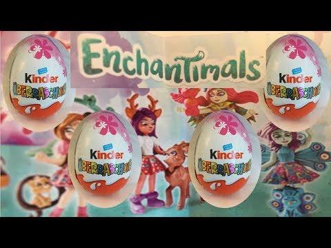 Download Kinder Surprise Egg  - Enchantimals Video