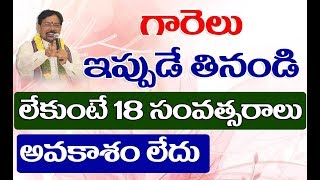 గారెల విందు - శుభాలు పొందు | Rahu Transit in Arudra Star Remedy | Pranati Television