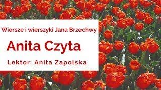 Wiersze i wierszyki Jana Brzechwy - Kaczka dziwaczka-czyta lektor Anita Zapolska [audiobook PL]