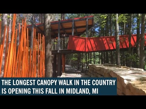 Nation's longest canopy walk opens this fall in Michigan