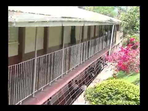 St David Catholic School Grenada