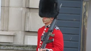 Bearskin Hats and SA80s - Great Combination!