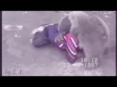 Khabib Nurmagomedov vs. Bear